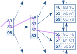 The Balanced Search Tree (B-Tree) in SQL Databases